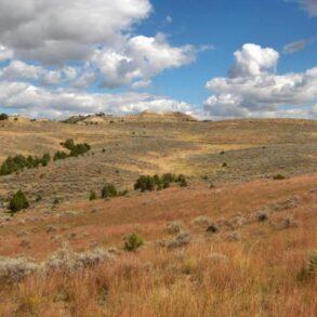 Gutz Ranch