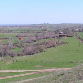 Shoulder Blade Creek Ranch