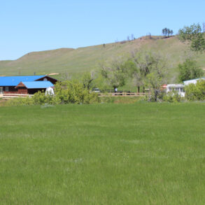 Sayle Rd House and Acreage