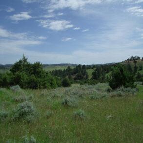 Bay Horse Creek Ranch