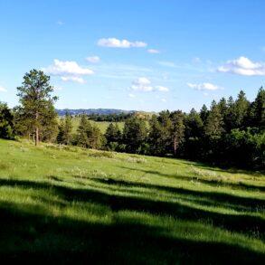 Horkin Creek Ranchette